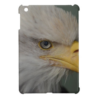 Bald Eagle of Alaska U.S.A. iPad Mini Cases