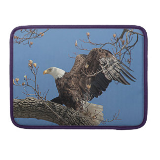 Bald Eagle on a tree branch Sleeve For MacBook Pro