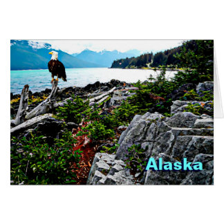 Bald Eagle On Alaska Coast Card