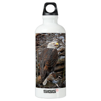 Bald Eagle on Snowy Nest Water Bottle