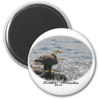 Bald Eagle on the Beach 2 Inch Round Magnet
