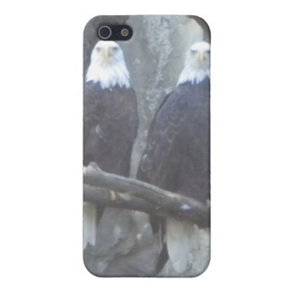 Bald Eagle Pair iPhone4 case