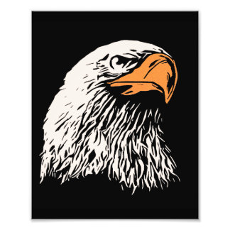 Bald Eagle Patriotic Photograph