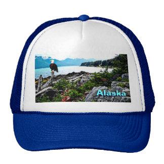 Bald Eagle Perched On Alaska Coast Mesh Hats