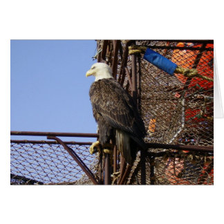 Bald Eagle Perched on Crab Pots Greeting Card
