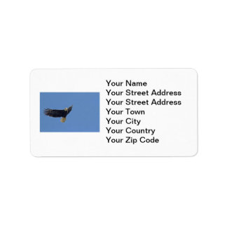 Bald Eagle Photo Personalized Address Label