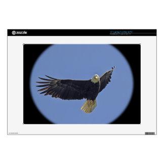 Bald Eagle Photo Laptop Decal