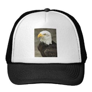 Bald Eagle Photo Trucker Hat