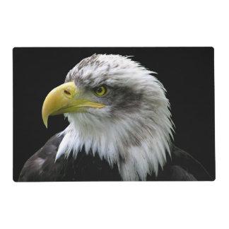 Bald Eagle Placemat