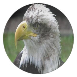 Bald Eagle Party Plate