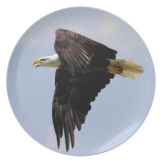 Bald Eagle Plate