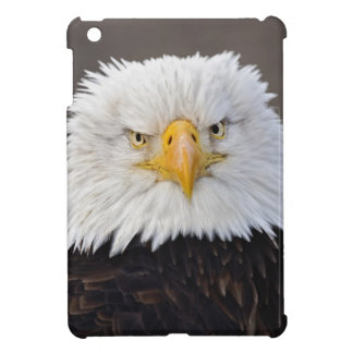 Bald Eagle Portrait, Bald Eagle in flight, Case For The iPad Mini