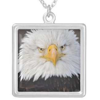 Bald Eagle Portrait, Bald Eagle in flight, Silver Plated Necklace