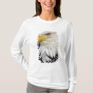 Bald Eagle portrait, Haliaetus leucocephalus, T-Shirt