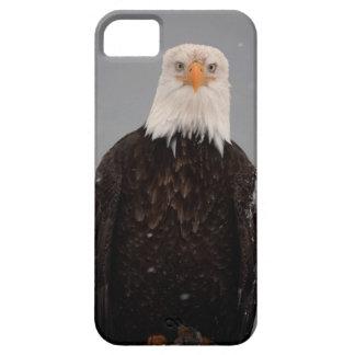 Bald Eagle Portrait in the Snow, Haliaeetus iPhone SE/5/5s Case