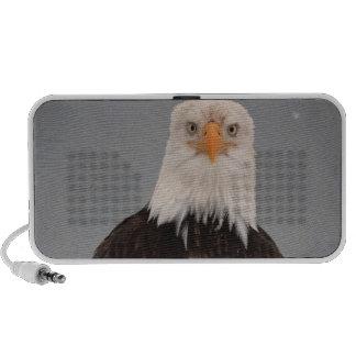Bald Eagle Portrait in the Snow, Haliaeetus Laptop Speaker