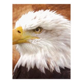 Bald Eagle Portrait Letterhead