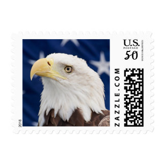 Bald Eagle Portrait with stars Postage