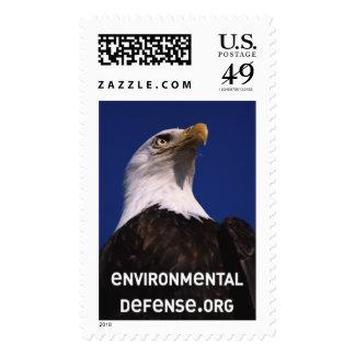 Bald Eagle Postage Stamp