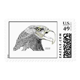 Bald Eagle Stamp