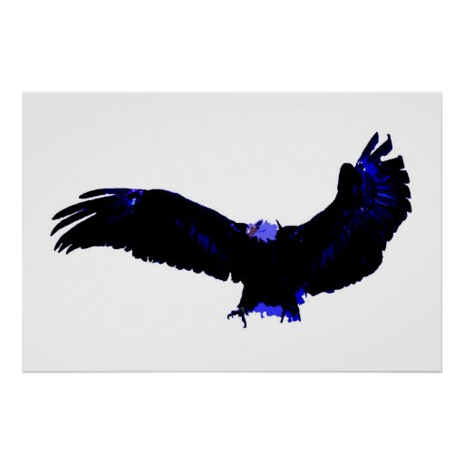 Bald Eagle Poster Print - American Eagles Posters