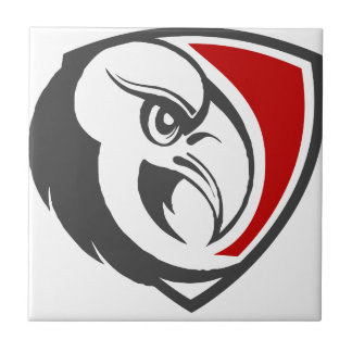 Bald Eagle Pride Tile