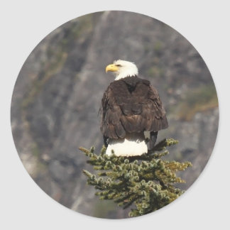 Bald Eagle Products Classic Round Sticker