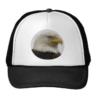 Bald Eagle Profile Photo on Unalaska Island Hats