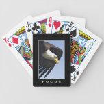 Bald Eagle Raptor Wildlife Designer Pack Playing Cards