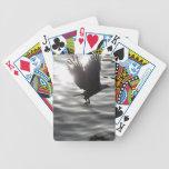 Bald Eagle Raptor Wildlife Designer Pack Card Decks