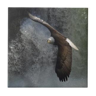 Bald Eagle Raptor Wildlife Waterfall Tile