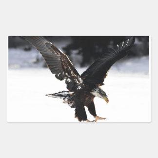 Bald Eagle Rectangular Sticker