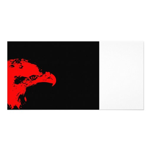 bald eagle red graphical facing right black bac photo card