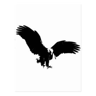 Bald Eagle Silhouette Postcard