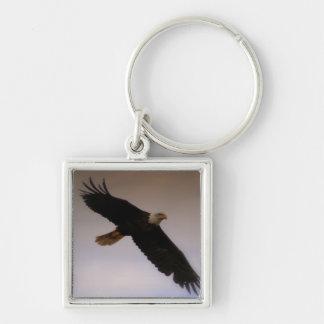 Bald Eagle Silver-Colored Square Keychain