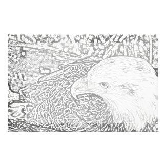 bald eagle sketch bw sideways bird animal feather stationery