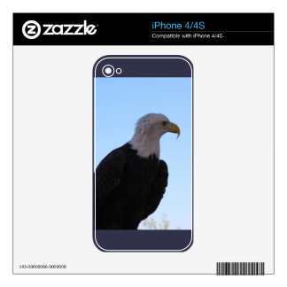 Bald Eagle Skin For The iPhone 4
