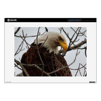 Bald Eagle Skins For Laptops