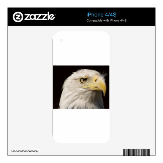 Bald Eagle Skins For The iPhone 4S