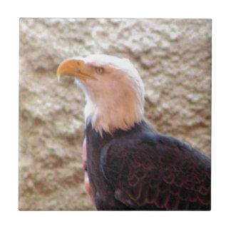 Bald Eagle Small Square Tile