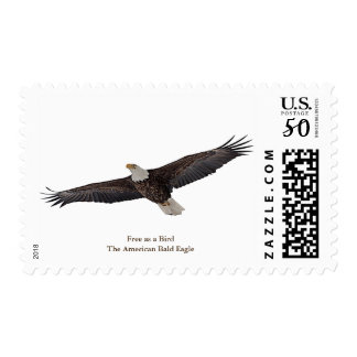 Bald Eagle Soaring Postage