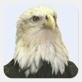 Bald Eagle Square Sticker