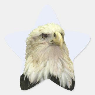 Bald Eagle Star Sticker