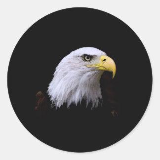 Bald Eagle Round Stickers