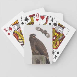 Bald Eagle (Stop body slamming me) Playing Cards