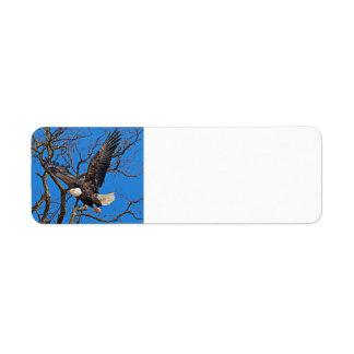 Bald Eagle taking flight Label