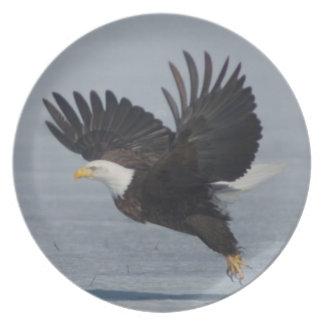 Bald Eagle Taking Flight on Snow Lower Klamath NWR Plates