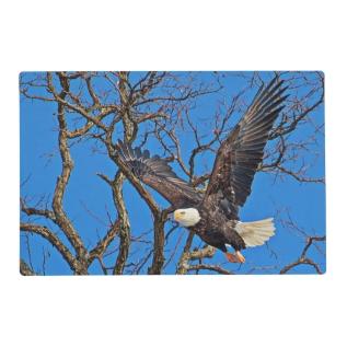 Bald Eagle taking flight Placemat at Zazzle
