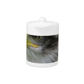 bald-eagle teapot