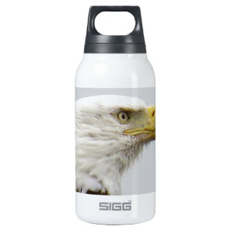 Bald Eagle Thermos Water Bottle